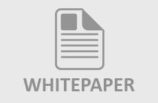 Whitepaper Image